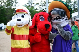 Sparky, the Red Dog and Sharky.